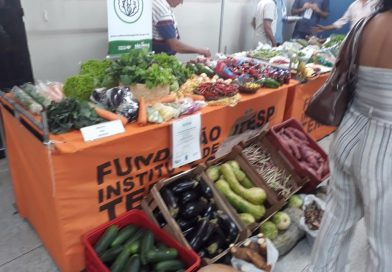 Produtores rurais doam os alimentos expostos durante a Rodada de Negócios para o Fundo Social de Presidente Prudente