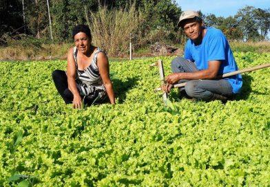 Agricultores do Assentamento Vergel iniciam entrega de alimentos para Penitenciária de Mogi Guaçu